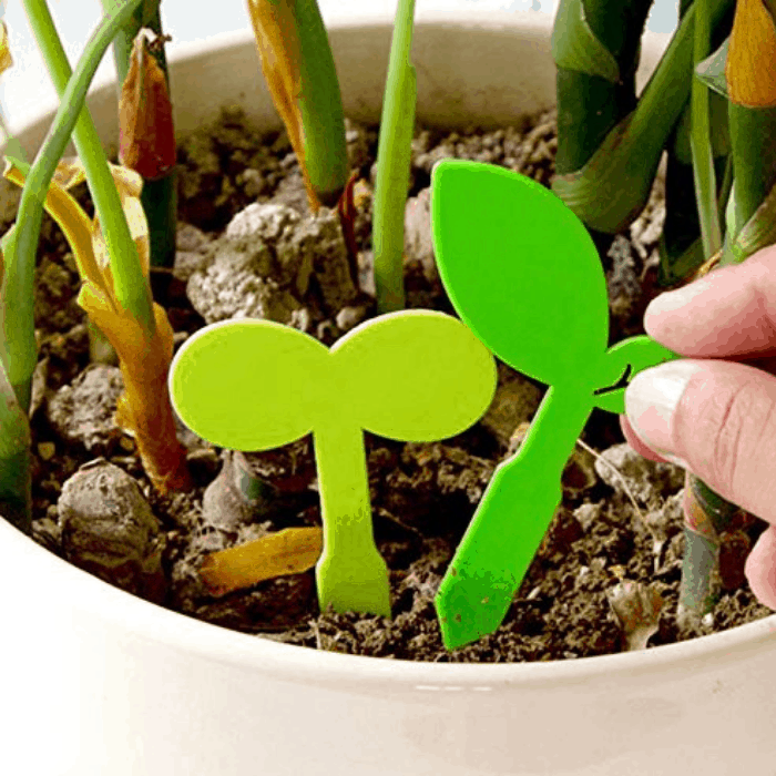 Make sure you have these indoor gardening supplies to succeed with your indoor garden!  This list covers indoor seedling starters to indoor gardening lights.