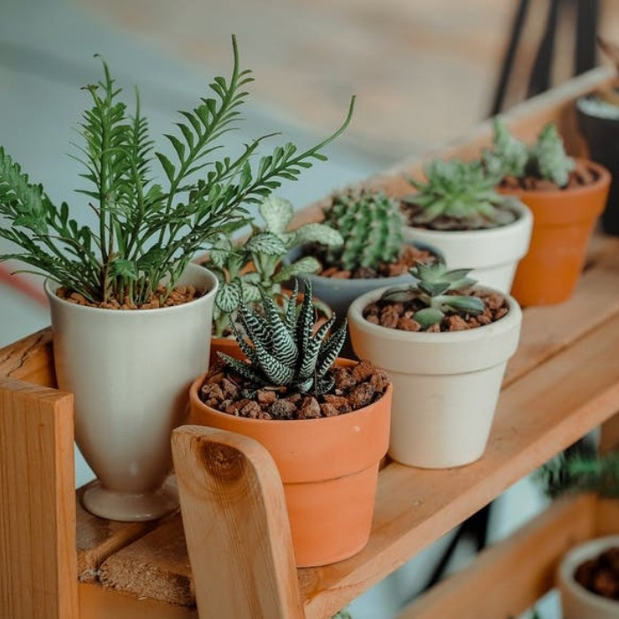 How Much Potting Soil Do I Need For My Container Gardening? We've done the math for you. Make sure you have enough potting soil before you get started planting.