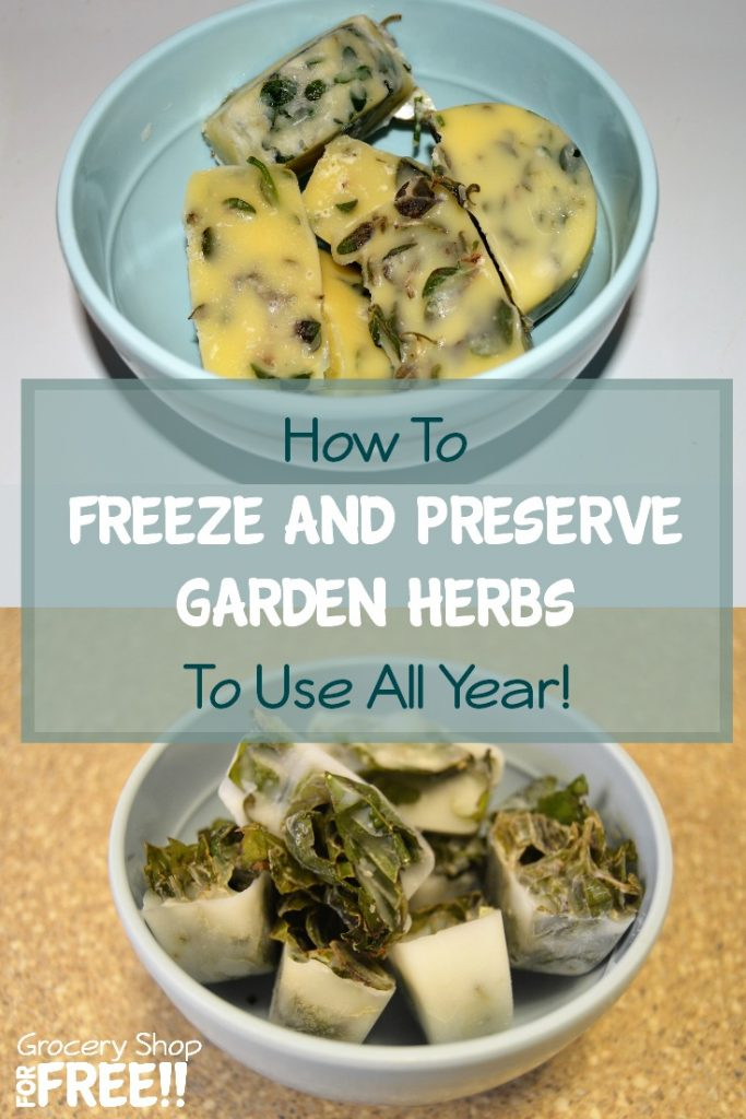 Need to know how to dry herbs or freeze and preserve them?  Here's a delicious way to freeze and preserve your garden herbs so you can use them all year!