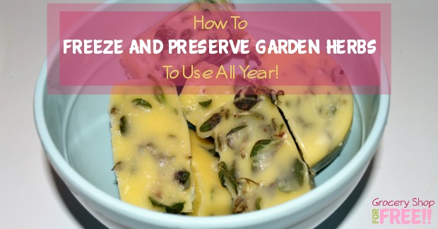 Need to know how to dry herbs or freeze and preserve them?  Here's a delicious way to freeze and preserve your <a href=