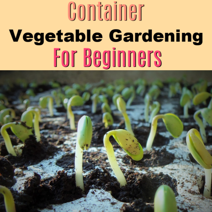 Container Vegetable Gardening Must Haves To Get Started NOW!
