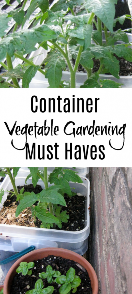 Want to start a garden?  Don't have the space? How about  Container Vegetable Gardening?   You don't even need a yard.  Start now, with these Must Have items!