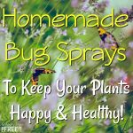 Homemade Bug Sprays To Keep Your Plants Happy & Healthy