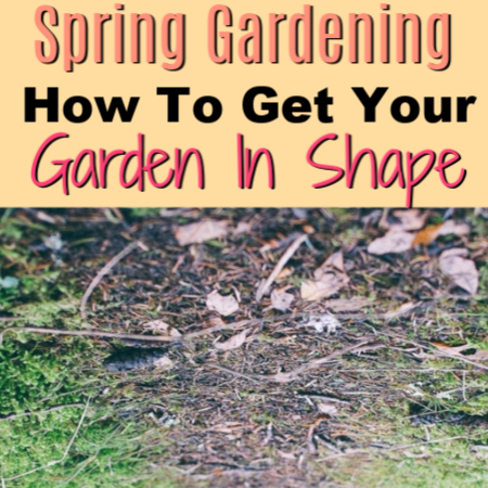 Spring Gardening:  How To Get Your Garden In Shape