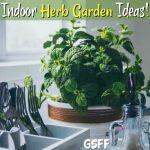 Indoor Herb Garden Ideas!