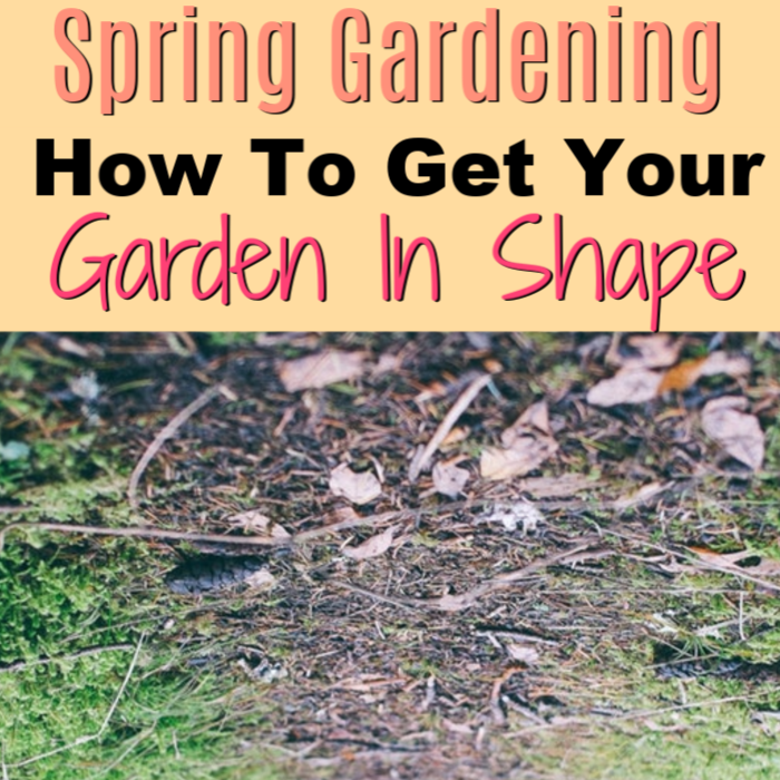 The thaw is HERE & it's time to start planning Spring Gardening tasks, tips, & tricks. What Spring Gardening Plants do you want to grow? Is your garden ready?