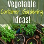 Vegetable Container Gardening Ideas!  For Indoor Or Outdoor Gardening!