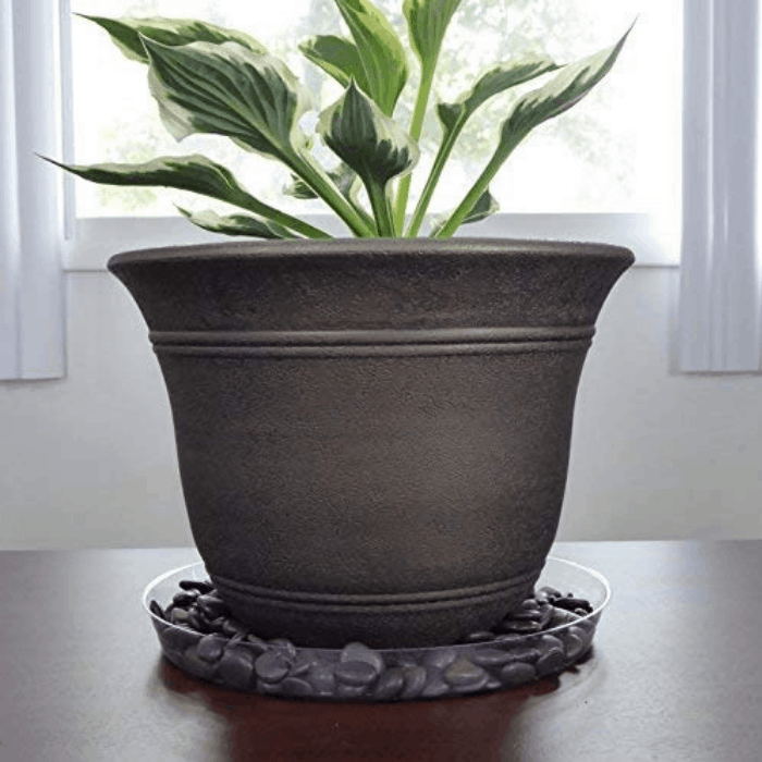 Indoor herb gardening has many health & wellness benefits. Try these Indoor Herb Garden Ideas whether using an indoor herb garden kit or starting from scratch.