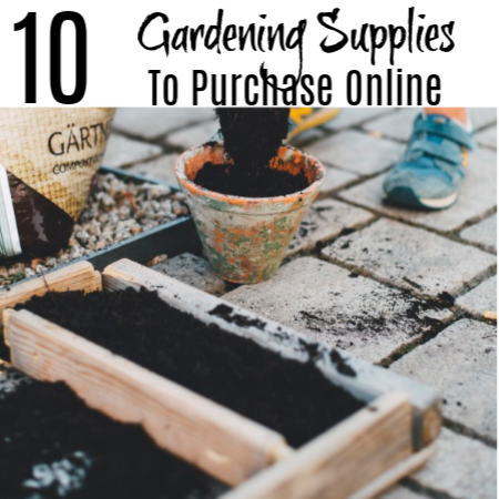 10 Gardening Supplies To Purchase Online (3)