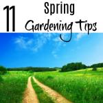 11 Spring Gardening Tips (2)