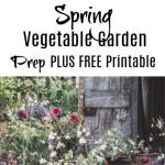 Spring Vegetable Garden Prep (2)