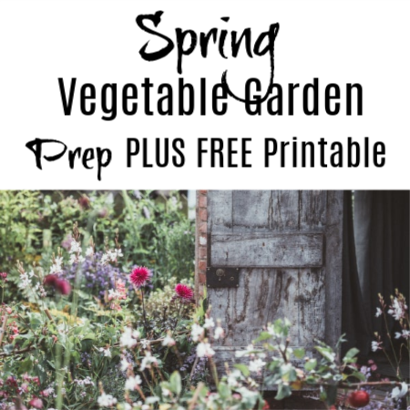 Spring Vegetable Garden Prep (2)