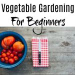Vegetable Gardening For Beginners (3)