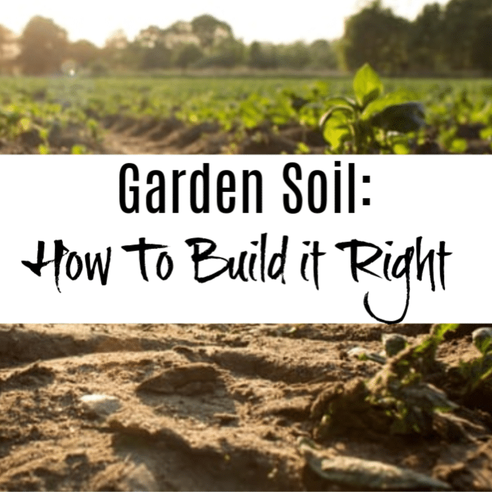 If you want to start your garden off right, then you want to make sure you have the right mixture of soil. In this article we talk about how to build your garden soil right.