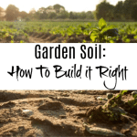 Garden Soil:  How To Build It Right