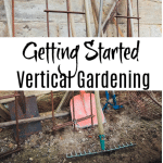 Getting Started Vertical Gardening: Tools You'll Need