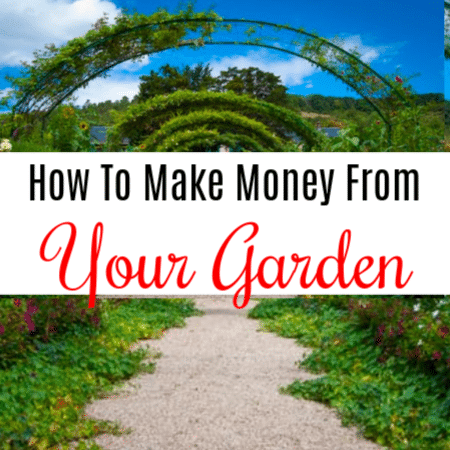 How To Make Money From Your Garden