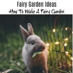 Fairy Garden Ideas_ How To Make A Fairy Garden (3)