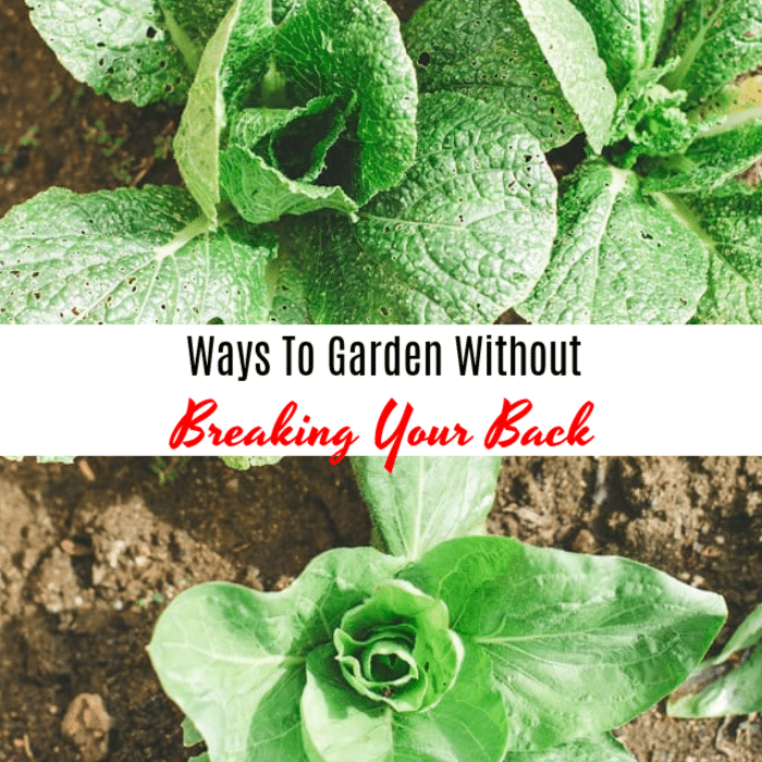 If you love gardening but don't love all the aches and pains that sometimes come with it, then click through to see the solutions we've found!