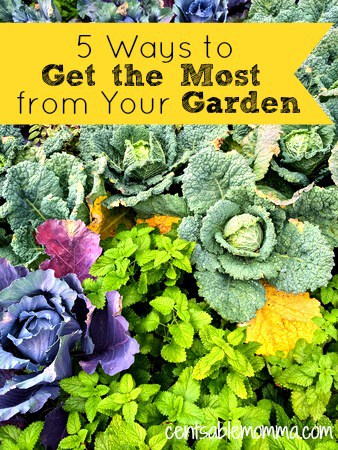 5-Ways-to-Get-the-Most-from-Your-Garden.jpg