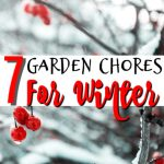 7 Garden Chores To Do Before Winter
