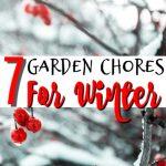 7 Garden Chores To Do Before Winter (1)