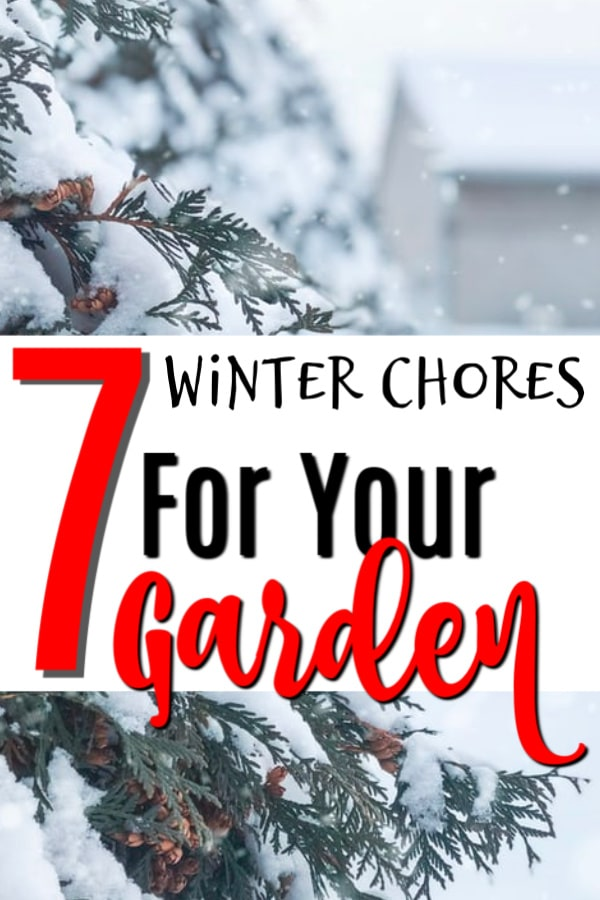 When we think of Garden Chores, we think of spring and summer gardening.  We don't think about the winter garden chores.  Click through to read about these garden chores...