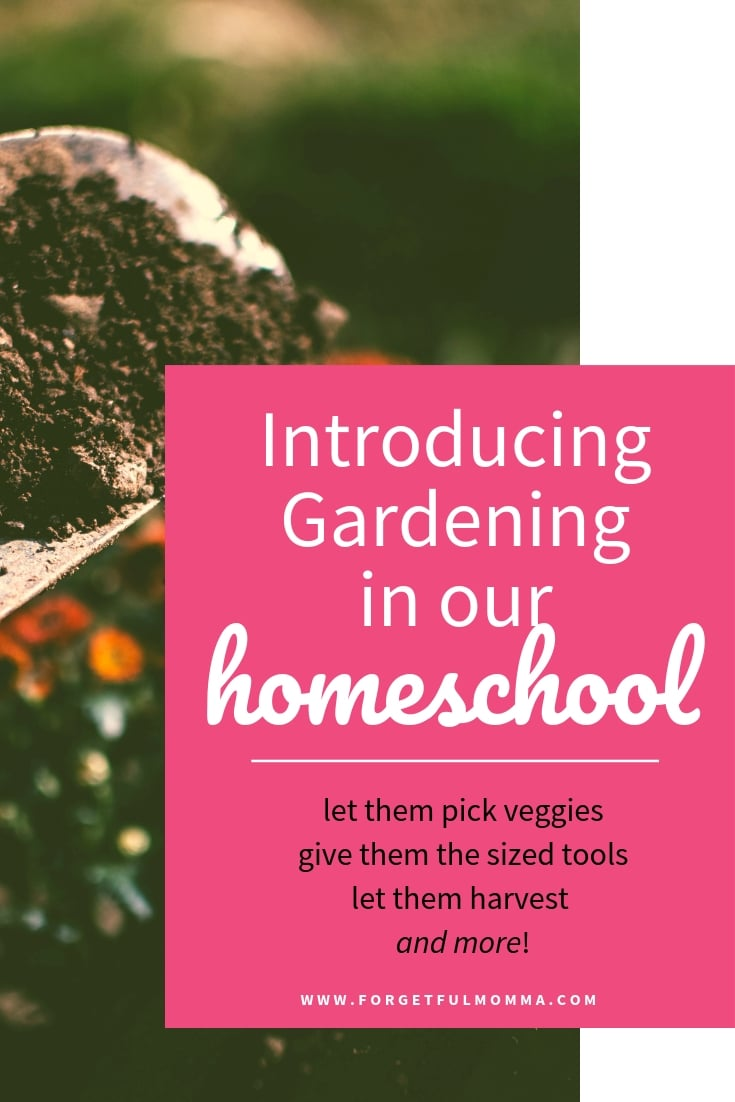 Introducing Gardening to Our Homeschool