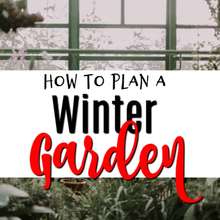 Gardening is all about the plans.  If you need help with your <a href=