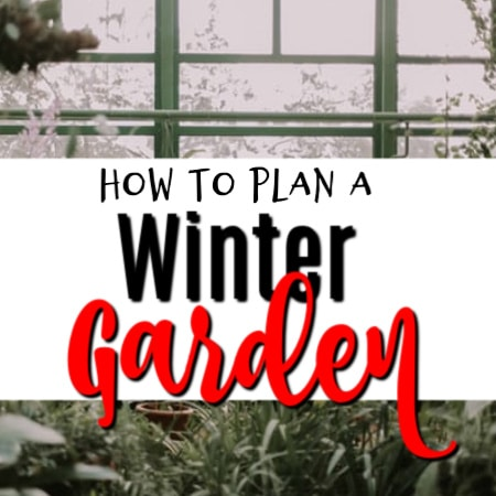 Making Your Own Winter Garden Plan