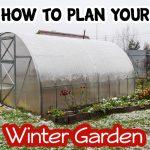Making Your Own Winter Garden Plan (2)