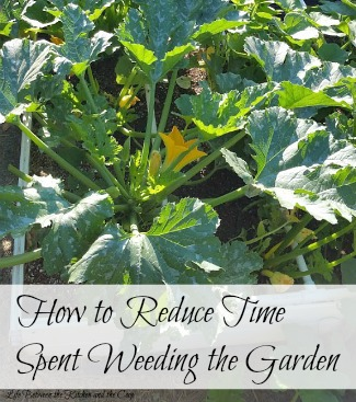 How to Reduce Time Spent Weeding Gardens So You Can Have More Free Time!