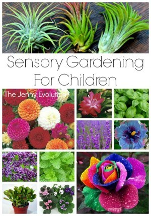Sensory Gardening for Children