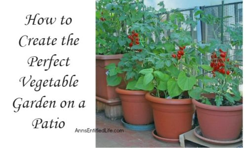 how-to-create-the-perfect-vegetable-garden-on-a-patio-horizontal-500x300.jpg