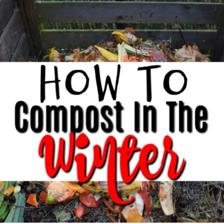 How To Compost In The Winter