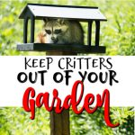 Tools For Keeping Critters Out Of Your Garden