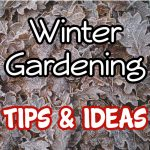 Winter Gardening_ Tips And Ideas For The Colder Months (1)