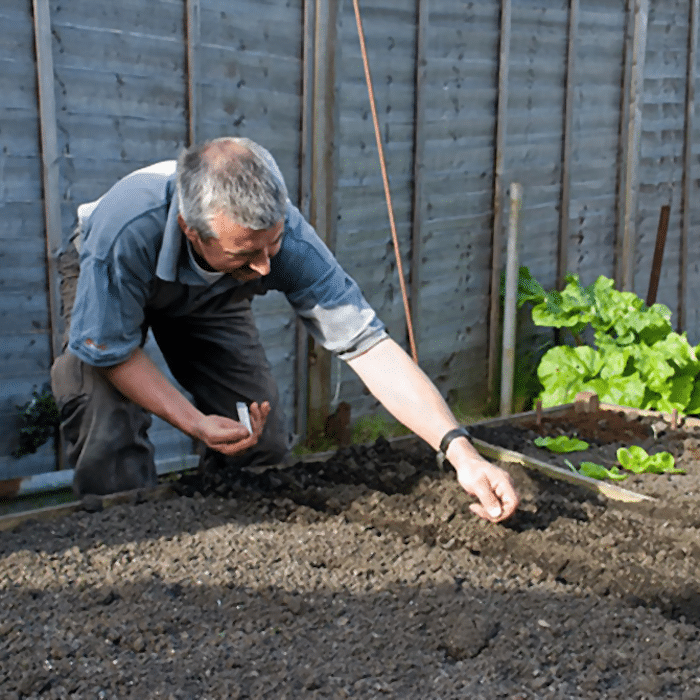 Man planting seeds in a raised garden