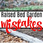 7 Raised Bed Gardening Mistakes