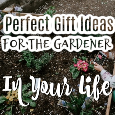 Gifts For Gardeners (3)