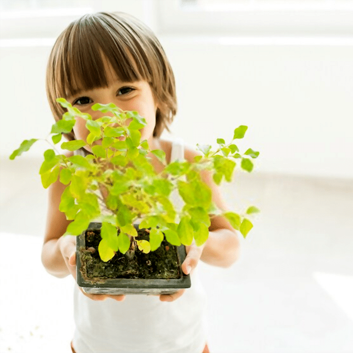 Teaching kids to garden is a fun and important experience for both of you.  Click through NOW to check out this list of the best plants to grow with kids...