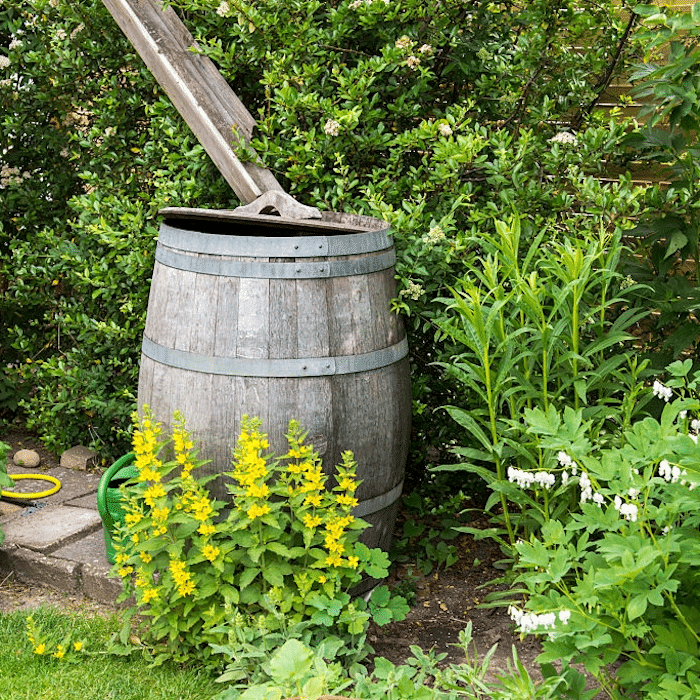 Making a rain barrel isn't diffcult and it doesn't have to be expensive either - but, it can save you tons of money.  Click through NOW to see how you can make your own rain barrel...