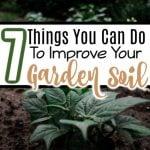 7 Tips To Improve Garden Soil (3)