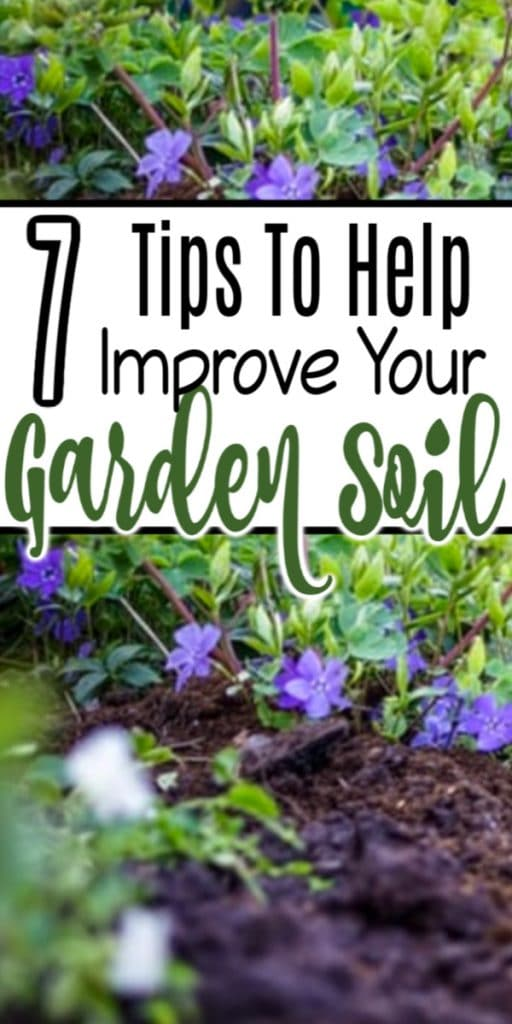 For most gardeners improving their soil is a must. Healthy garden soil is important for making sure our plants can thrive.  Click through to see these 7 tips to improve garden soil NOW...