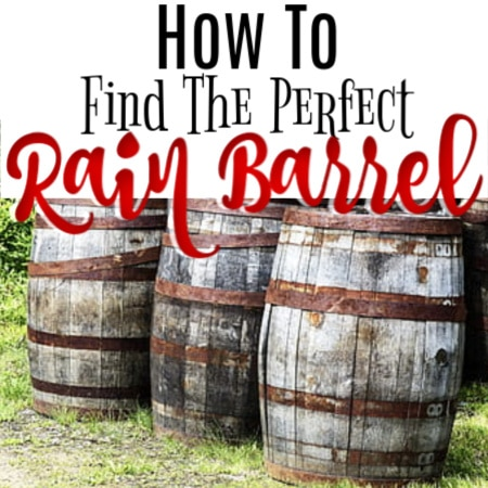 How To Find The Perfect Rain Barrel