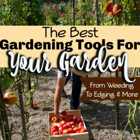 The Best Gardening Tools From Weeding To Edging & More
