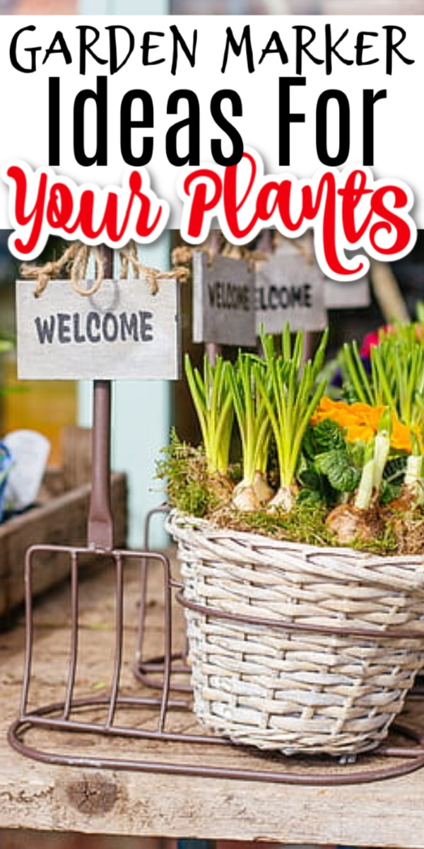 Using garden markers is definitely essential unless you have a photographic memory.  I don't, lol  Click through NOW to see some plant label ideas for your garden....