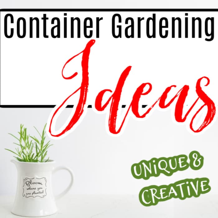 If you're looking for new & improved or just cute and fun ways to display the plants in your garden, these picks are for you!  Click through NOW to see them...