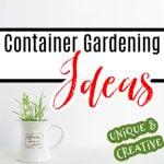 Unique & Creative Container Gardening Ideas