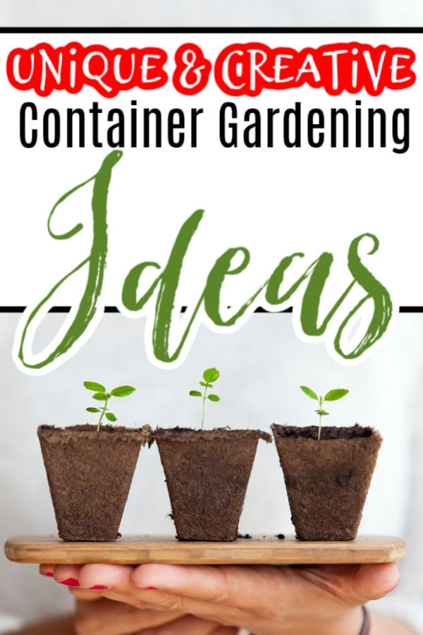 Unique & Creative Container Gardening Ideas (2)